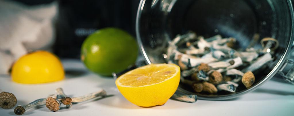 Lemon Tek