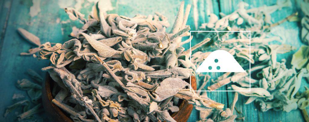 Het maken van een Salvia Divinorum Extract met droge bladeren