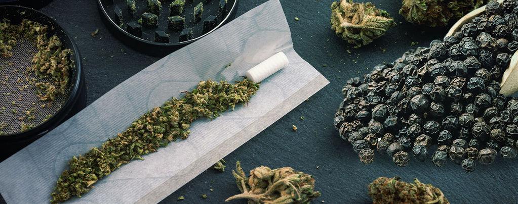 Vermindert zwarte peper door cannabis veroorzaakte angst?