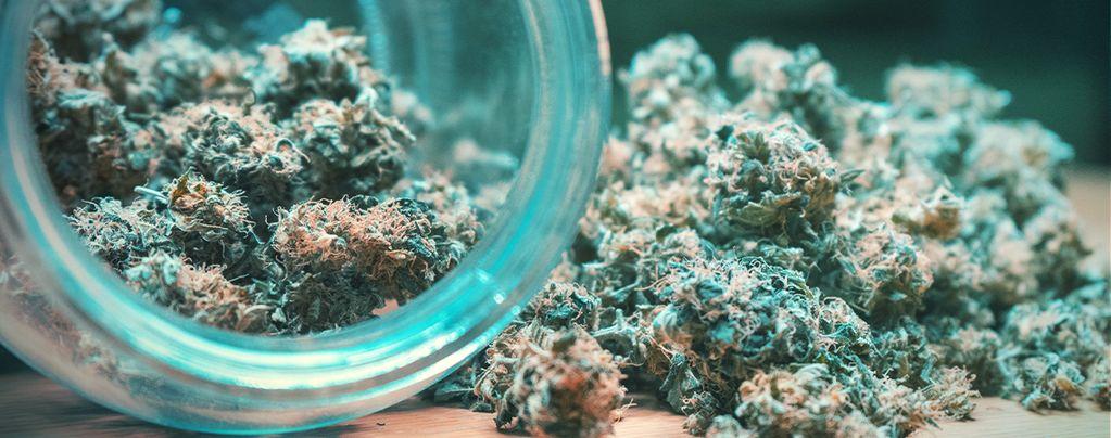 Cannabis toppen: drogen en uitharden