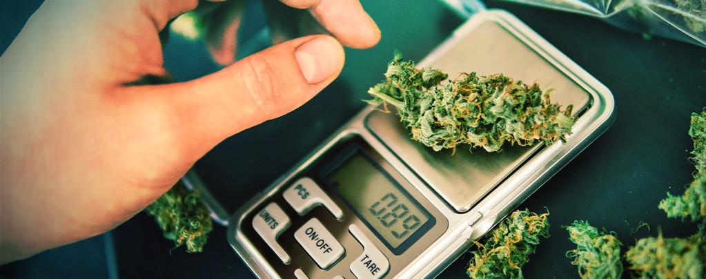 Hoe Kies Je De Juiste Cannabis Weegschaal?