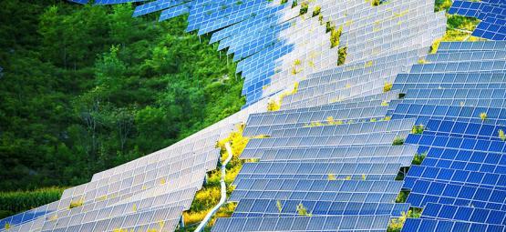 Hoe Zonnepanelen Kweekruimtes Kunnen Revolutioneren