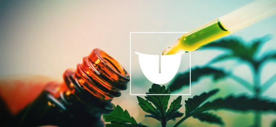 Waarom Een Sublinguale Cannabis-Tinctuur Geweldig Is