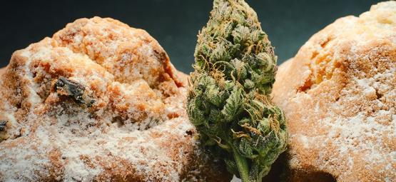 De Nederlandse Edible Cannabis Renaissance