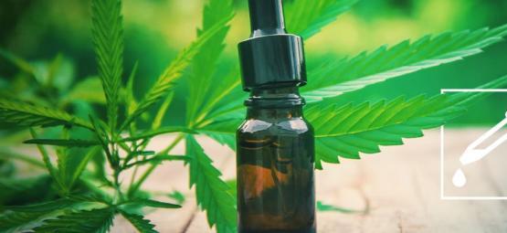 Maak Je Eigen Cannabis Tincturen
