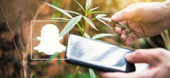 9 Cannabisaccounts om te volgen op Snapchat