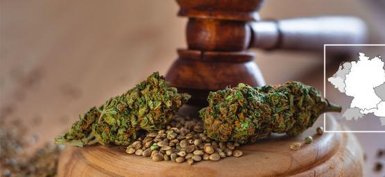 Duitsland En Oostenrijk: De Status Van Legale Cannabis