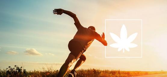 Effecten Van Cannabis Op Sportprestaties