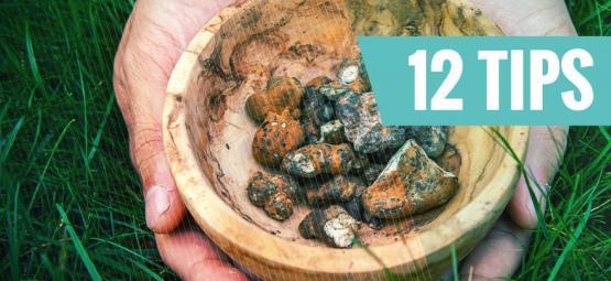 12 Tips Voor Een Fantastische Ervaring Met Truffels