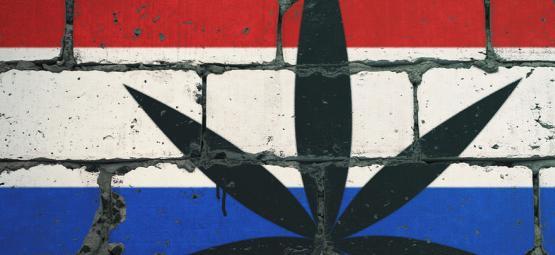 De Top-10 Rookplekken Van Nederland