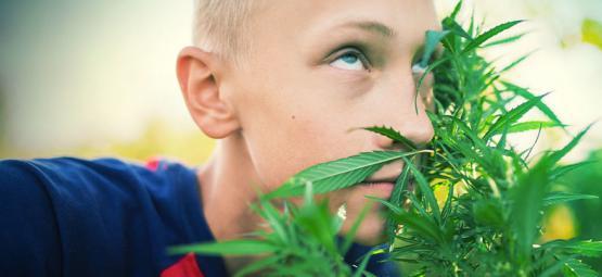Hoe Word Je High Zonder Cannabis