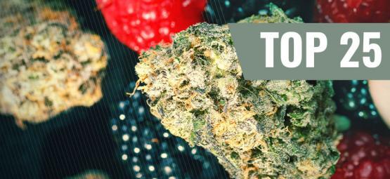 De Top Vijf Fruitige Cannabis Soorten Die Je Nu Meteen Moet Proberen