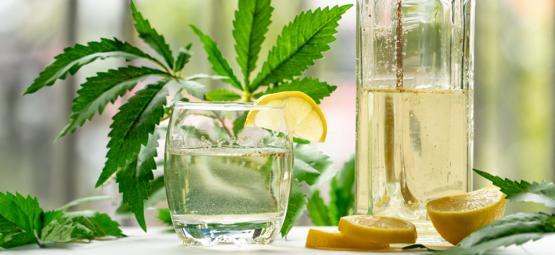 Hoe Je Ginjah Maakt: Met Cannabis Verrijkte Gin-tonic