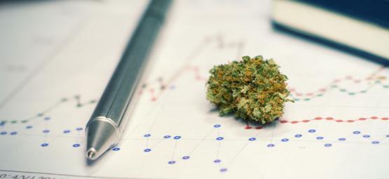 De Voor- (En Nadelen) Van Cannabisgebruik Bij Het Studeren Of Trainen