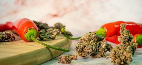 Cannabis En Cayennepeper: Een Verrassend Gunstige Combinatie