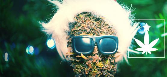 Hoe Organiseer Je Een Kerstfeest Met Cannabis-Thema