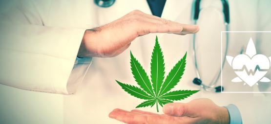 Wat Is De Beste Manier Om Medicinale Cannabis Te Gebruiken?