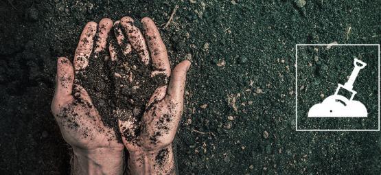 Wat Is Gerecyclede Biologische Levende Grond (ROLS) En Hoe Maak Je Het?
