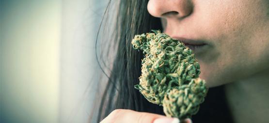 Hoe Verberg Of Voorkom Je De Geur Van Cannabis?