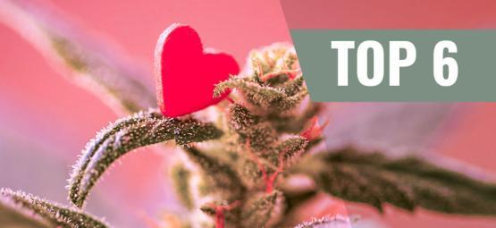Top 6 Cannabis Strains Voor Valentijnsdag