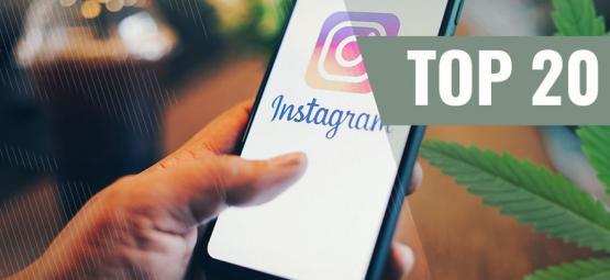 De 20 Beste Wietgerelateerde Instagram-Accounts [Update 2021]