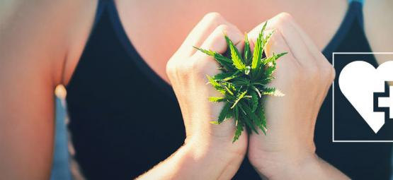 Kan Cannabis Helpen Bij het Afvallen?