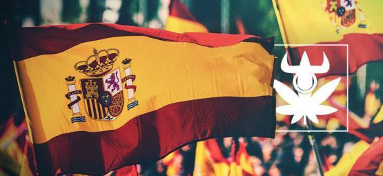 Top 10 Spaanse Cannabis Club Soorten