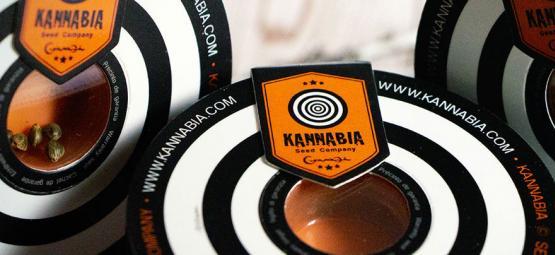 Top 10 Cannabis Strains Van Kannabia Seeds