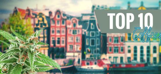 Top 10 Cannabis Soorten Uit De Coffeeshop