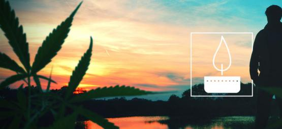 Ter Nagedachtenis Aan Cannabispionier Nevil Schoenmakers