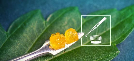 Alles Wat Je Zou Moeten Weten Over Het Cannabisconcentraat Live Resin