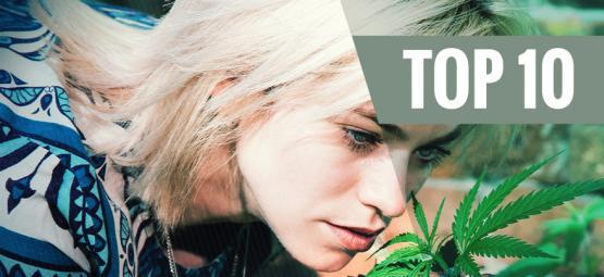 Top 10 Cannabisvariëteiten Die Geen Sterke Geur Hebben