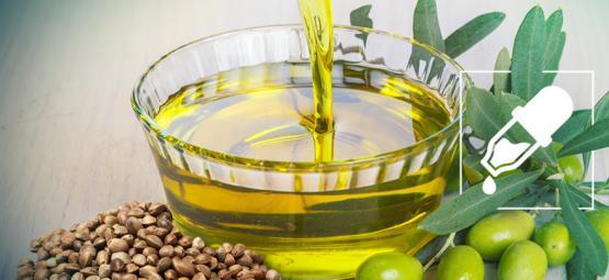 Wat Is De Beste Dragende Olie Voor CBD: Hennepzaadolie Of Olijfolie?
