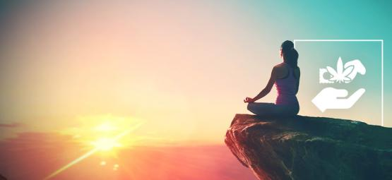 De Rangorde Van Psychedelica: Beginner Tot Spirituele Goeroe