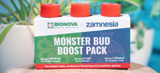 Gebruik Monster Bud Boost Pack Om Fruitigere Wiettoppen Te Kweken