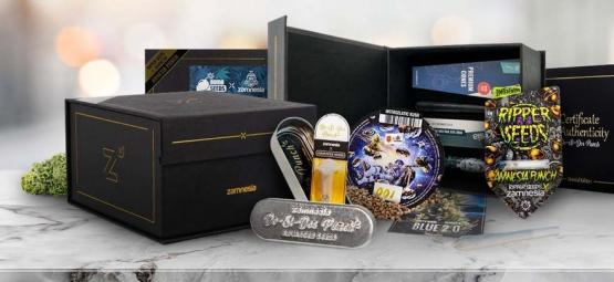Limited Edition Wietzaadjes Van Zamnesia