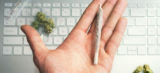 Cannabiscarriere  - Je 420 Droombaan Vinden