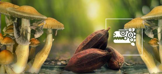 De Aztec Combo: Paddo's & Cacao
