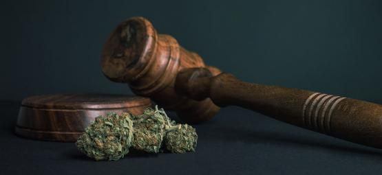 10 Redenen waarom men ALLE drugs zou moeten legaliseren