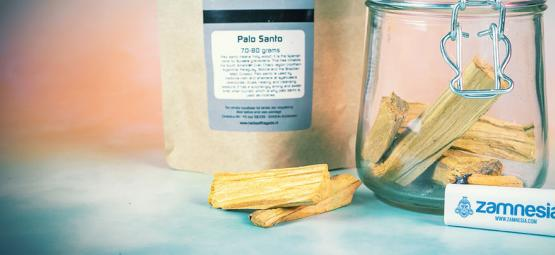 Hoe En Waarvoor Kun Je Palo Santo Hout Gebruiken?