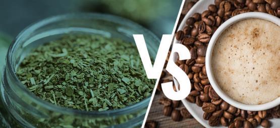 Yerba Maté vs. koffie: Moet je de overstap maken?