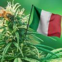 De beste cannabissoorten om in 2017 in Italië buiten te kweken