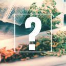 Joints, blunts, en spliffs: Wat is het verschil