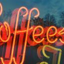 Zamnesia's Bezoek Aan Amsterdamse Coffeeshops