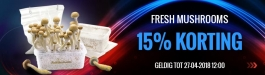 Aanbieding Fresh Mushrooms